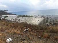 TEKELI - Mersin'de Seraları Hortum Vurdu