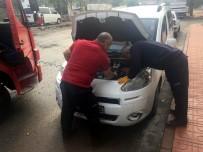 Siirt'te Araç Motoruna Sıkışan Kedi Kurtarıldı