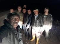 Sulama Kanalına Düşen Kızılgeyik Kurtarıldı