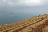 EROZYON - Van'ın Artos Dağı Yeşilleniyor