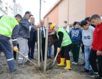 SARAYBOSNA - 'Çevreci Başkan'dan Örnek Davranış