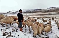 Erzincan'da Kar Nedeniyle Koyun Sürüleri Yaylada Mahsur Kaldı