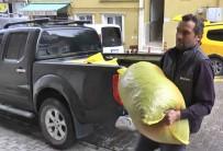 Giresunlu Fındık Üreticileri Cumhurbaşkanı Erdoğan'ın Açıkladığı Fındık Fiyatını  Değerlendirdi
