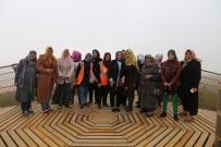 KENT ORMANI - Kilis'teki Belediye Tesisleri Yoğun İlgi Görüyor