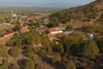 EROZYON - Manisa'da Ağaçlandırma Çalışması Erozyonu Yendi