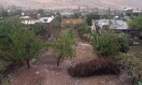 Siirt'te Sağanak Yağış Ekinlere Zarar Verdi