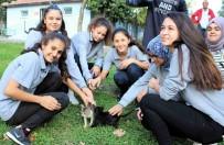 Öğrenciler Can Dostlarını Ziyaret Etti