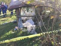 3 Gündür Kayıp Olan Yaşlı Adam Barakada Ölü Bulundu