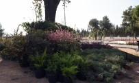 ENDEMIK - Dokuma'ya Botanik Bahçe Kuruluyor