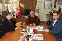 SATRANÇ FEDERASYONU - Rodostoşah'da Yeni Dönem Hazırlıkları Başladı