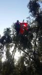 Ağaç Tepesinde Cumhuriyet Kutlaması