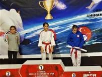 AHMET AYDIN - Bursalı Karatecilerden Büyük Başarı
