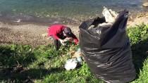 Üniversite Öğrencileri Karadeniz Sahilini Temizledi