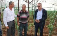 HALUK ŞIMŞEK - Antalya'da Solucan Gübresi İle Tarım Uygulaması Yapıldı