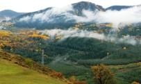 GÜNEŞLI - Ardahan'da Hazan Mevsimi Görsel Şölen Oluşturdu