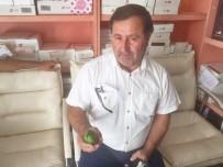 İTFAİYE MÜDÜRÜ - Sungurlu'da Kuşa Benzeyen Salatalık Yetiştirildi