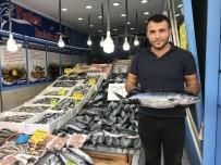 BALIK FİYATLARI - Tezgahlarda Balık Bolluğu