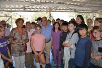 DENİZ KAPLUMBAĞALARI - Yabancı Öğrencilerden Hayvan Barınağına Ziyaret