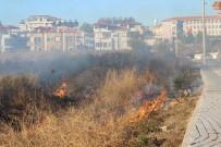ORMAN YANGINI - Antalya'da 2 Noktada Orman Yangını