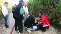 Bolu'da Ahşap Evde Yangın