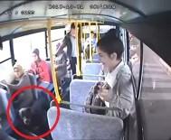 DOBERMAN - Halk Otobüsüne Binen Köpek Ortalığı Savaş Alanına Çevirdi