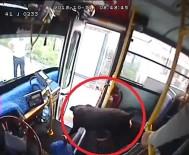 KANBER - Halk Otobüsüne Binen Köpek Paniğe Neden Oldu