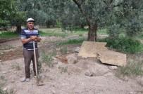 ARKEOLOJİK KAZI - İznik'te Roma Dönemine Ait Oda Mezar Bulundu