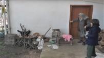 EMEKLİ MAAŞI - Emekli Maaşıyla Yüzlerce Kediye Bakıyor