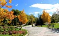 KUŞBURNU - Ata Botanik Park, Hazan Mevsiminde İlgi Odağı