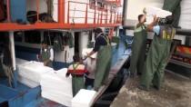 Balıkçılar Limana Binlerce Kasa Dolusu Palamutla Döndü