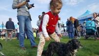 EVCİL HAYVAN - Çocuklar Hayvanlarla Mutlu Pati Şenliği'nde Buluştu