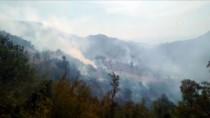 ERHAN TÜRKER - GÜNCELLEME - Mersin'de Orman Yangını
