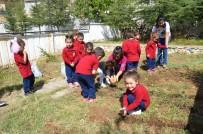 HER AÇIDAN - Küçük Bahçıvanlar İş Başında