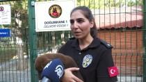 EĞİTİMLİ KÖPEK - Polisin 'Sağ Kolu' Görev Köpekleri