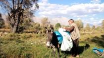 GEÇİM SIKINTISI - Şanlıurfalı Çobanın Ekmek Mücadelesi