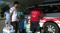 26 EYLÜL - Şehit Polisin Organları Bağışlandı