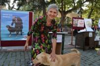 ORTAHISAR - Trabzon'da 4 Ekim Dünya Hayvanları Koruma Günü Etkinliği Düzenlendi