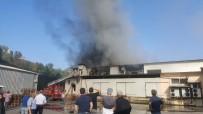 Trabzon'da Süt Ürünleri İmalatı Yapan Bir Fabrikada Yangın Çıktı