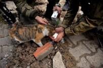 TSK'dan 4 Ekim Hayvanları Koruma Günü Paylaşımı