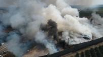 GÖKÇELI - Adana'da Çırçır Fabrikasında Yangın