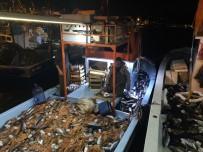 Balıkçıların Yüzü Gülüyor, Tezgahlarda Palamut Bolluğu Yaşanıyor