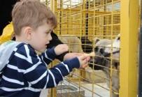 Dünya Hayvan Hakları Günü'nde Anlamlı Ziyaret