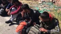 DEREKÖY - İstikametlerini Şaşıran Göçmenler Polise Yakalandı