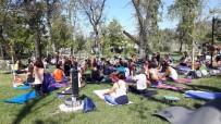 YOGA - Köyceğiz'de Yoga Günleri