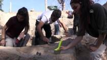 İNSAN KEMİĞİ - Antropolog Ve Arkeolog İkizler Tarihi Araştırıyor