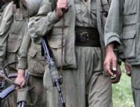 PKK - ABD teröristleri eğitiyor