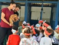 HAYVAN BARINAĞI - Hayvan Barınağında Çocuklara Hayvan Sevgisi