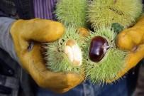 İHRACAT - (Özel) Yüksek Rekolte Şekerlemecilerin Yüzünü Güldürdü