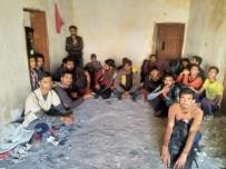 KAÇAK GÖÇMEN - Van'da 118 Kaçak Göçmen Yakalandı