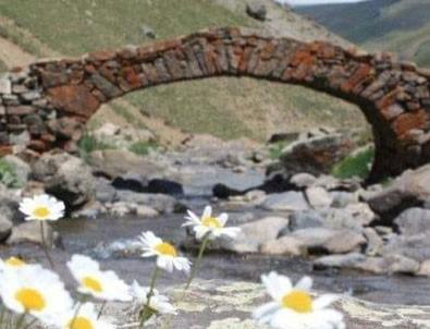 Gümüşhaneliler 300 yıllık köprüyü arıyor